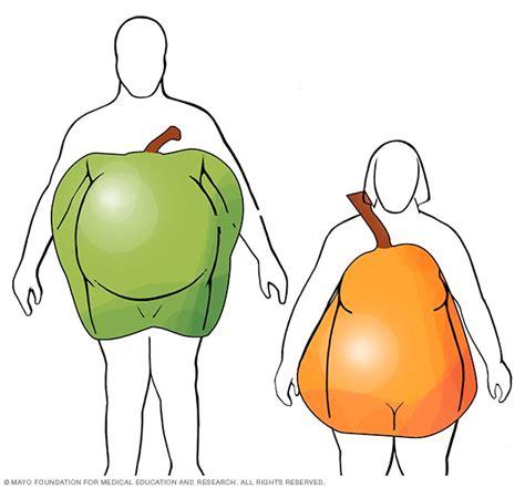 apple  pear body shapes mayo clinic
