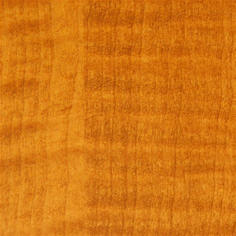 maple colour wood image gallery maple stain