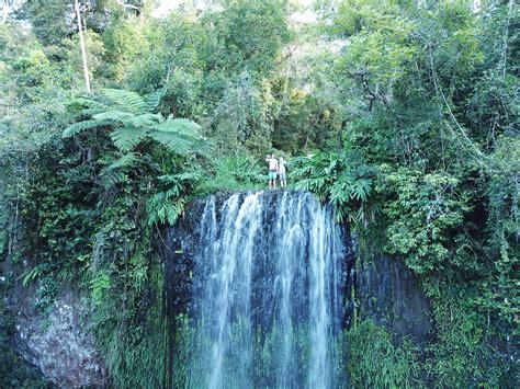 Daintree Rainforest Adventures Australia Impulse Odyssey