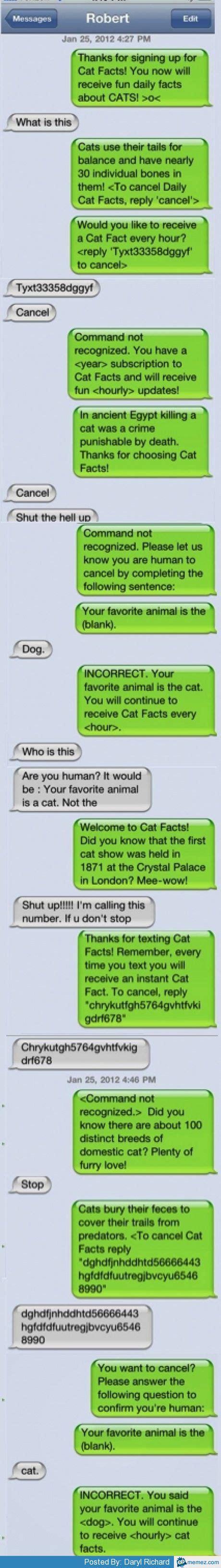 Texting Meme - funny text prank memes com