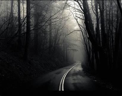 Dark Road Foggy