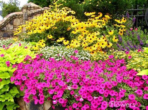 Backyard Flower Garden Design by 10 Small Flower Garden Ideas To Build A Serene Backyard