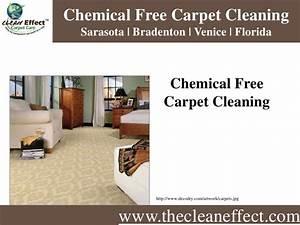 Chemical Free Carpet Cleaning Sarasota | Bradenton ...