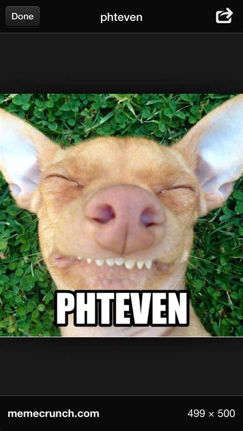 Stephen Dog Meme - phteven dog mcdonalds www imgkid com the image kid has it
