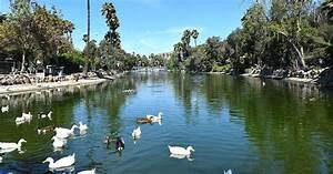 U00bfporque Est U00e1 Verde El Lago Del Parque Morelos En Tijuana