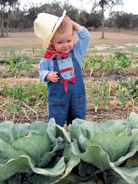 young farmer    beginning farmers