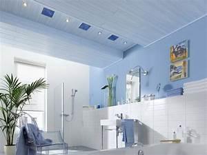 Welche Decke Im Bad : wand und deckengestaltung mit paneelen ~ Sanjose-hotels-ca.com Haus und Dekorationen