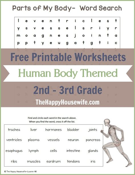 Human Body Themed Worksheets Free Printables  The Happy Housewife™  Home Schooling