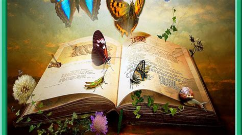 book  knowledge wallpaper  background image  id wallpaper abyss