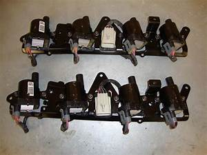 D585 Coil Packs With Brackets And Wiring Harness - Ls1tech