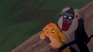 The Lion King GIFs - Find & Share on GIPHY