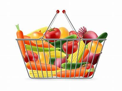 Basket Shopping Vector Realistic Icon Clipart Health