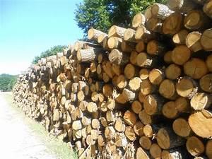 1 Stere De Bois Poids : nicolas gauvrit bois de chauffage nantes 44 ~ Dailycaller-alerts.com Idées de Décoration
