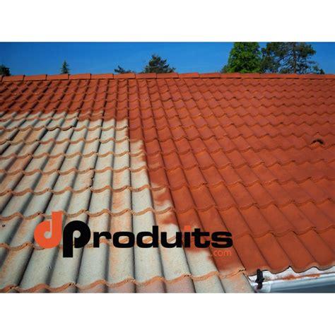 peinture tuile ciment peinture toiture pas cher rev 234 tements modernes du toit
