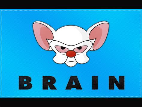 Pinky And The Brain Flag Wallpaper Daves Geeky Ideas