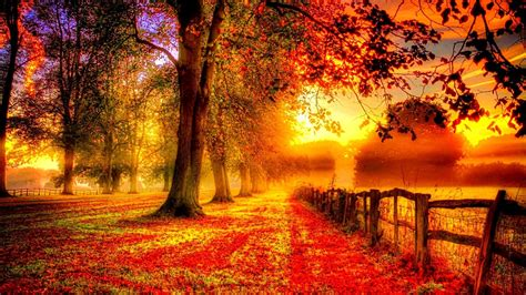 Autumn Wallpaper Iphone 8 Plus by Iphone 6 Autumn Wallpaper 87 Images