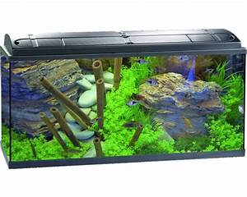 Aquarium 120l Mit Unterschrank : aquarium eheim aquapro 100 plus mit beleuchtung heizer filter thermometer fangnetz futter ~ Frokenaadalensverden.com Haus und Dekorationen