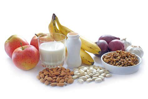 Prebiotics And Probiotics Balancing Your Gut Flora Ibs