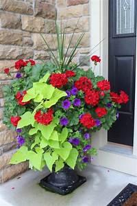 12, Gorgeous, Flower, Pot, Ideas, For, Your, Front, Porch