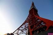 東京遊︰3/17 東京鐵塔、秋葉原@朝陽里|PChome 個人新聞台