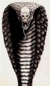 17 best ideas about Cobra Tattoo on Pinterest | Ink, Snake ...