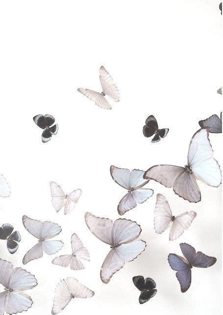 fondo tumblr mariposas