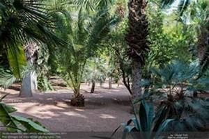 Rever De Jardin : r ver de jardin en islam ~ Carolinahurricanesstore.com Idées de Décoration