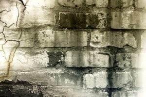 Feuchtigkeit In Der Wand : die 7 h ufigsten ursachen f r feuchte w nde ~ Sanjose-hotels-ca.com Haus und Dekorationen