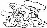 Pilze Champignons Steinpilze Paddestoelen Setas Grzyby Druku Cogumelos Kurki Malvorlage Funghi Kolorowanka Fungo Kolorowanki Colorear Gifgratis Malvorlagen1001 Animaatjes Dibujos1001 Prend sketch template