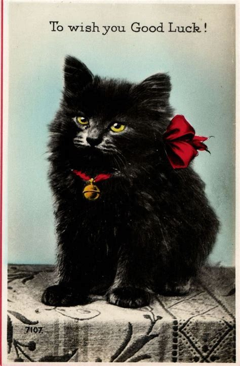 luck cat cats wish artist lucky da postcard valentine visit animals collection collectible