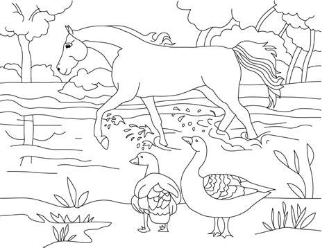 gambar gambar binatang mewarnai anak
