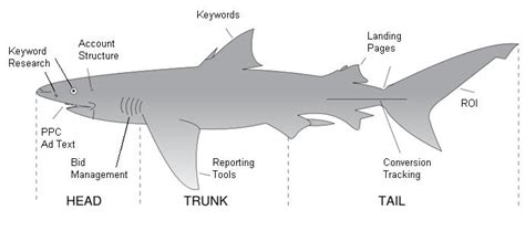want your business to be around in 450 million years manage your ppc caign like a shark