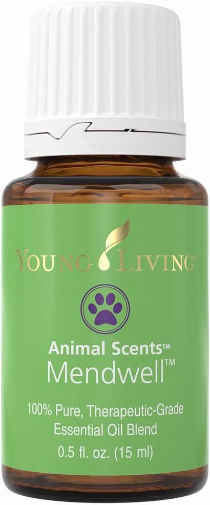 15ml Essential Silo Oils Youngliving Paw Balm