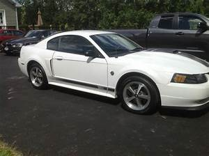 Sell used 04 Mustang Mach 1 Premium White 5 Speed Manual Leather Upholstery 4.6L v8 in Naples ...