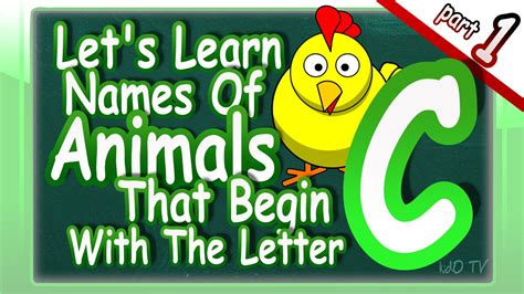 animals that start with the letter s animals names in that begin with the letter c 49568