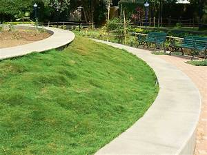Gazon Pour L Ombre : le blogue du creddo moins de pelouse traditionnelle ~ Premium-room.com Idées de Décoration