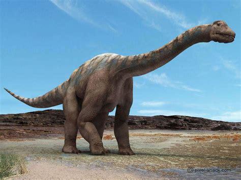 le de chevet dinosaure quel est le plus grand dinosaure qui ait exist 233