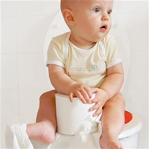 r 233 ducteur de toilette un 233 quipement essentiel pour l