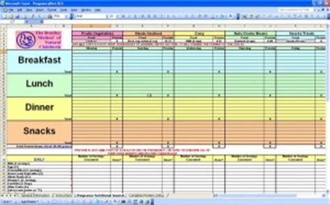 food calorie spreadsheet pregnancy diet spreadsheet excel templates