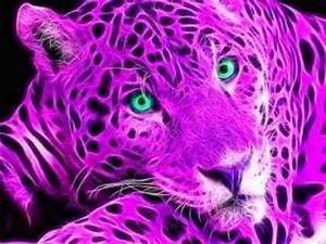 17 Best images about neon cats on Pinterest