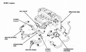 1990 Acura Integra Engine Diagram