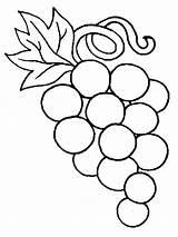 Coloring Grape Grapes Fruits Printable sketch template
