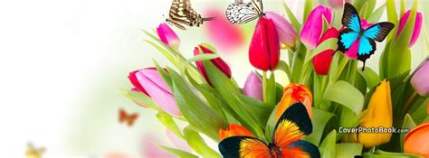 Spring Flowers Colorful Butterflies Facebook Cover Animals