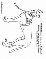 Coloring Shepherd German Dog Dane Sheet Printable Realistic Template Puppy Schnauzer Danes Library Clipart Popular sketch template