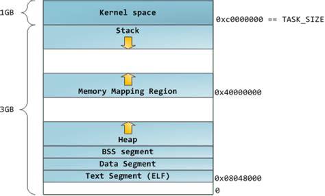anatomy   program  memory   finite