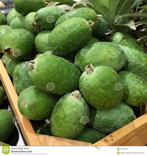 Pineapple Guava Fruit Stock Photo Image Of Green Pile