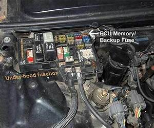 Honda How To Reset Check Engine Light