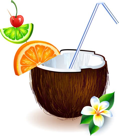 Coconut Drink Drawing