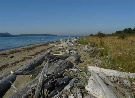 washington islands driftwood island joyce spiaggia puntellare mare costa cory guemes state scogliera docentjoyce pxhere wa