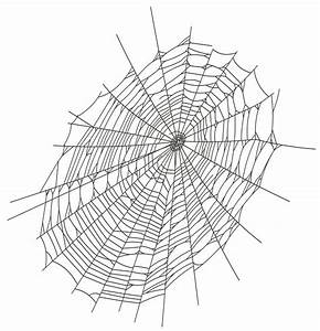 Halloween Large Spider Web PNG Clipart | Gallery ...